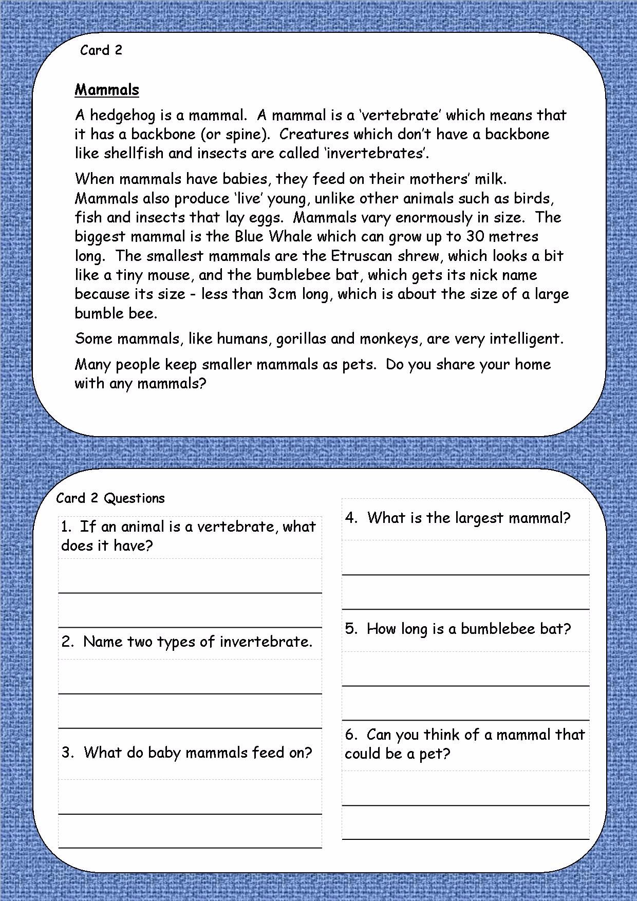Free punctuation worksheets ks2