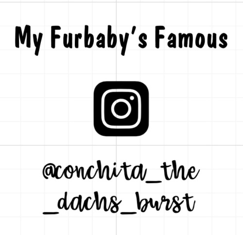 Famous Furbaby