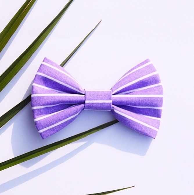 purple striped dog bow