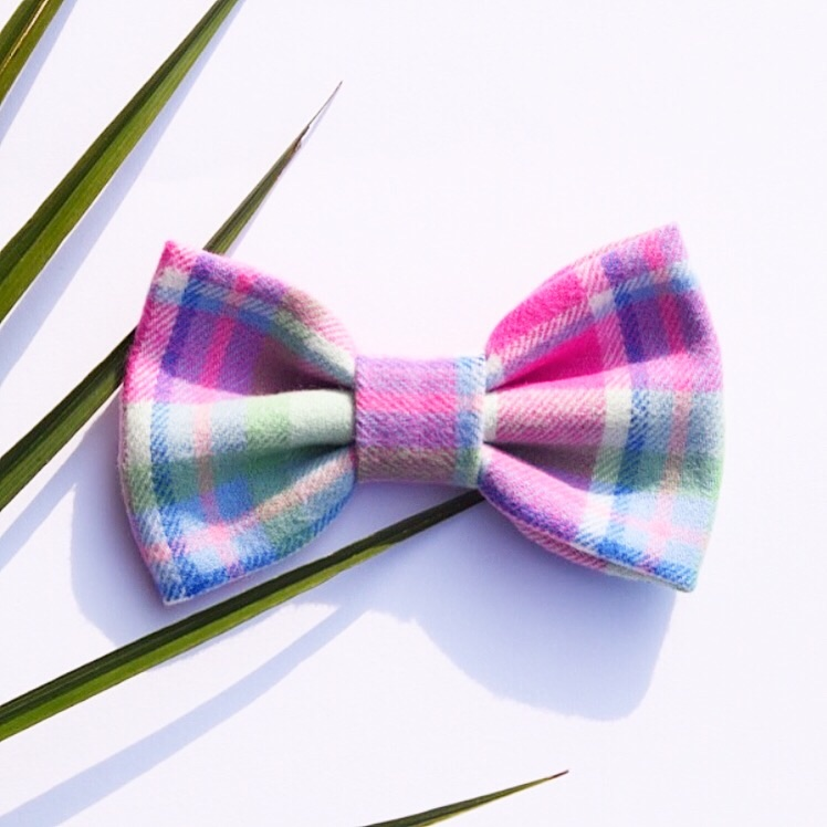 pink and blue bow for pets