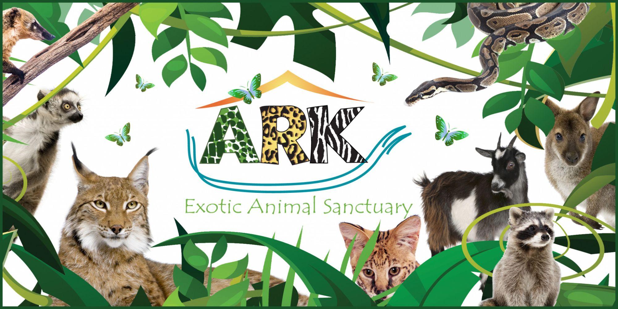 The Ark Wildlife Park Stickney Nr Skegness