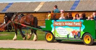 Hardy's Animal Farm Ingoldmells near Butlins
