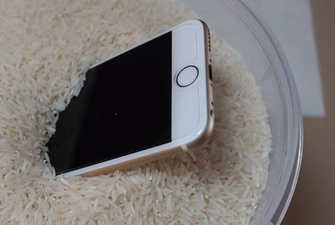 iphone6 in rice