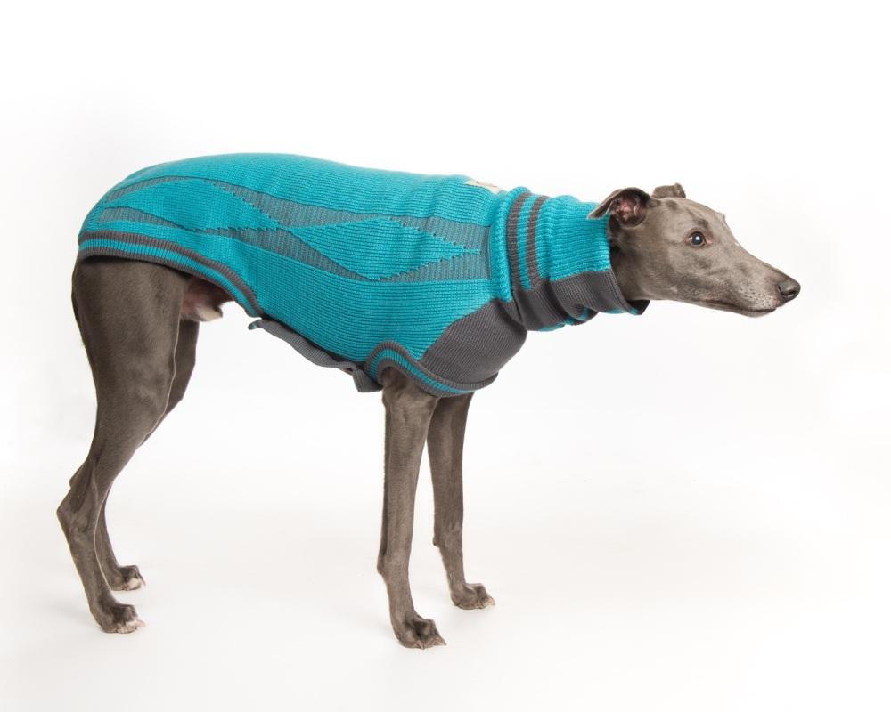 Diamond Sweater: Ferozi Blue/Grey for Greyhounds