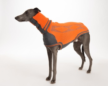 Diamond Sweater: Orange/Grey for Greyhounds
