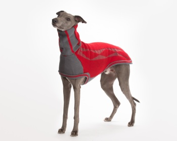 Diamond sweater: Crimson Red/Grey for Whippets