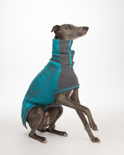 Diamond sweater: Ferozi Blue/Grey for Whippets
