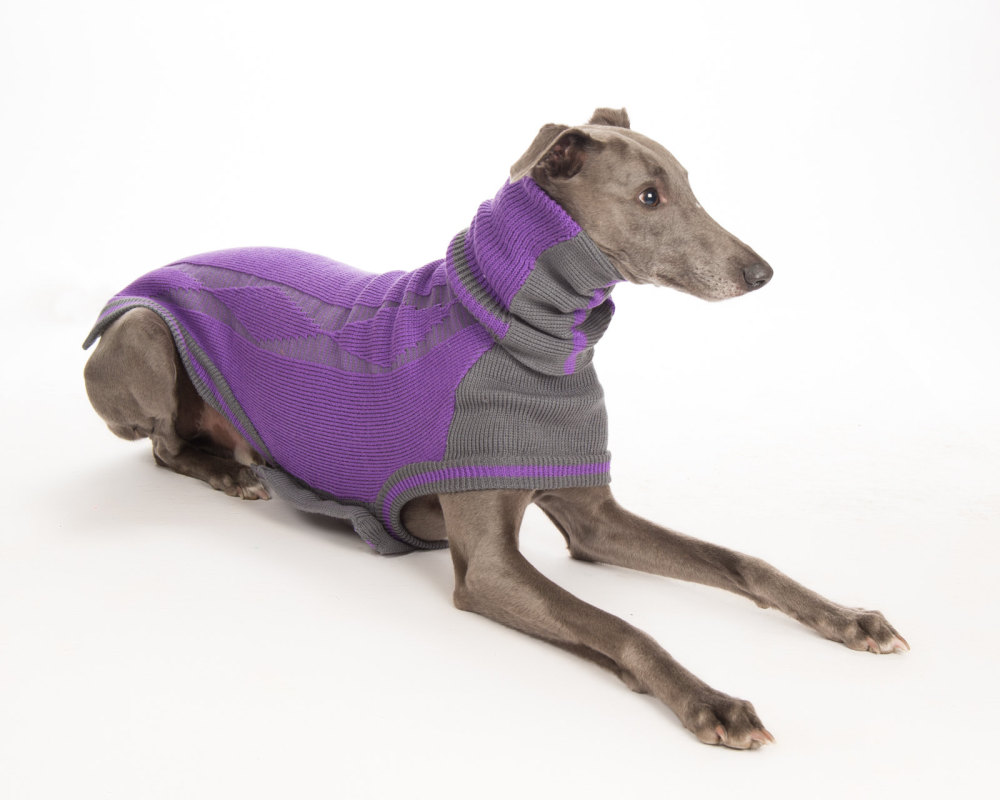 Diamond Sweater: Purple/Grey for Greyhounds