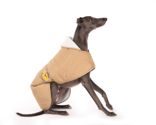 Beige Quilted Jacket for Whippets