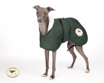 Olive Green Quilted Jacket for Greyhounds