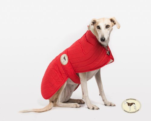 Crimson Red Quilted Jacket for Whippets