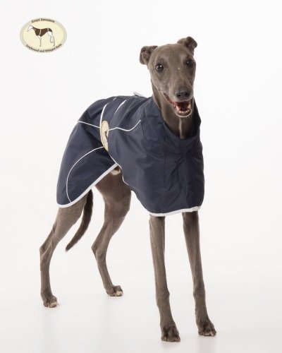 New Colour! Navy Blue Rain Mac for whippets