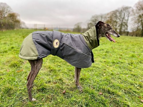 Waterproof Padded Luxury Jacket; Grey/Olive Green for Greyhounds