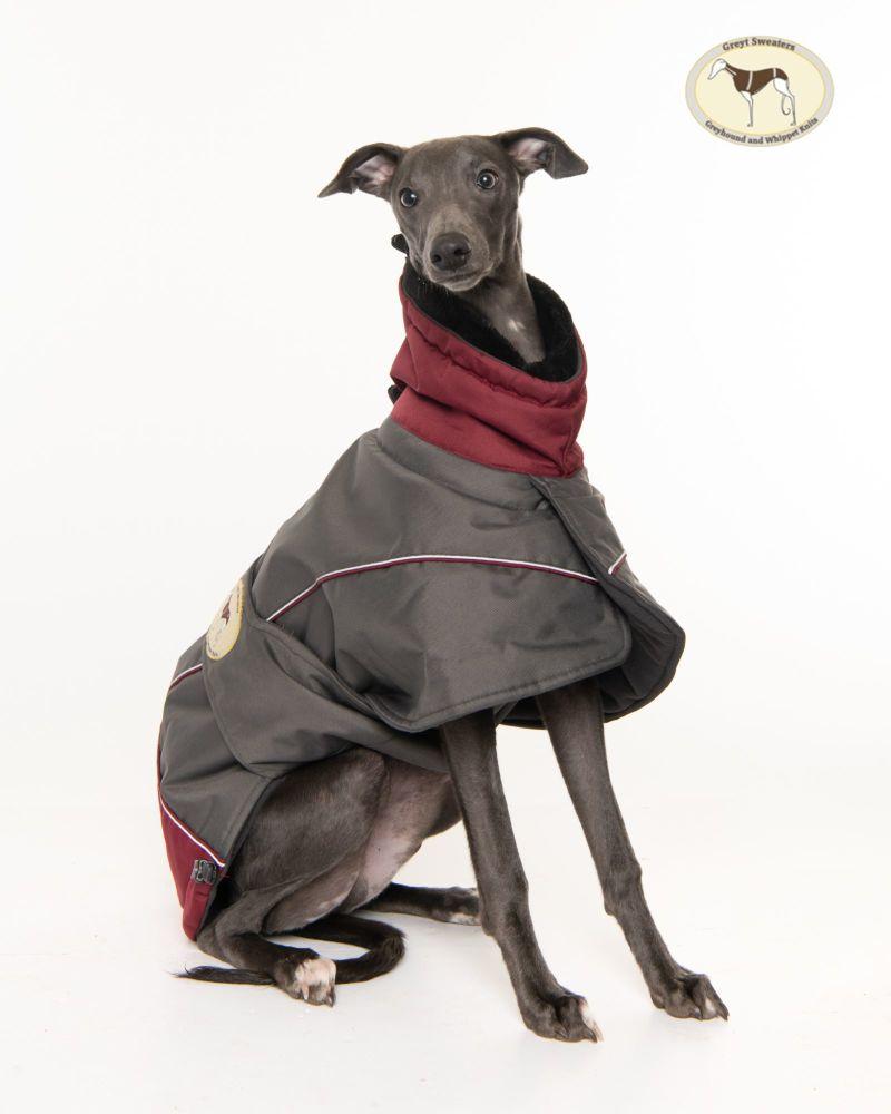 Waterproof Padded Luxury Jacket; Dark Grey/Burgundy for Whippets