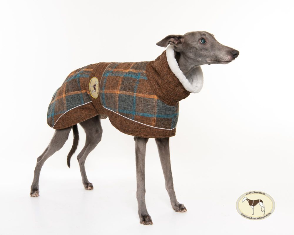 Maple Tweed Coat for Whippets