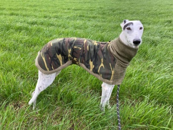 Camo-Knit Coat for Whippets