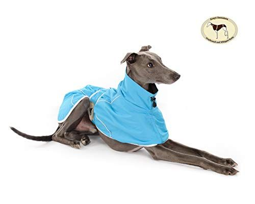 Ferozi Rain Mac for Italian Greyhounds