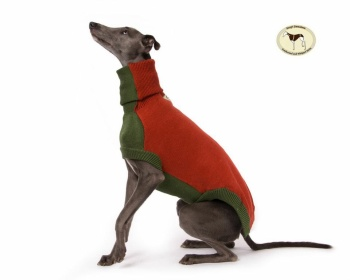Contrast Sweater: Dark Green with Tan for Greyhounds