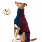 Contrast Sweater: Wine with Denim Blue for Whippets