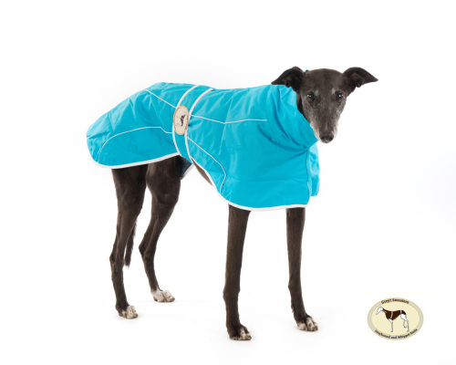 Ferozi Rain Mac for Whippets