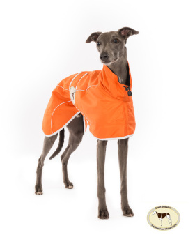 Orange Rain Mac for Whippets