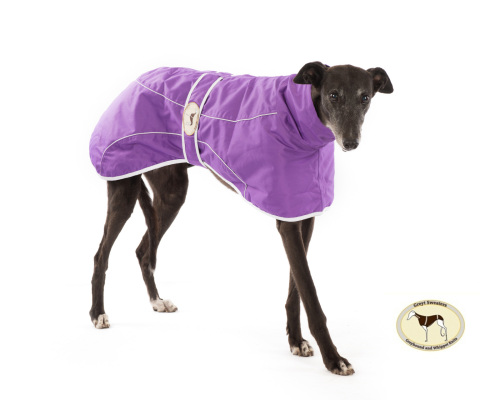Purple Rain Mac for Greyhounds