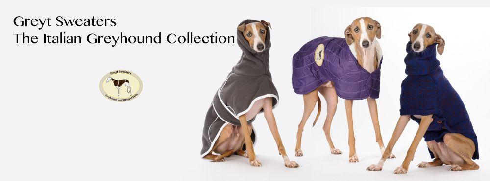 Italian Greyhound Sizes