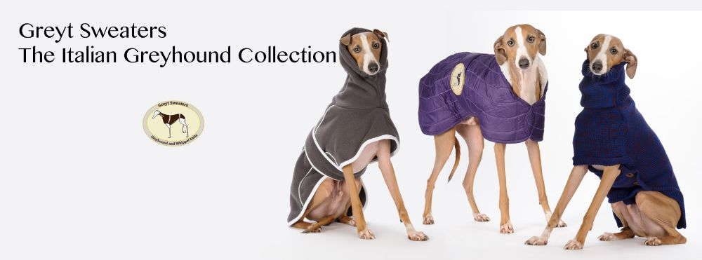 Italian Greyhound Sizes