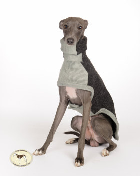 Contrast Sweaters Italian Greyhound Sizes