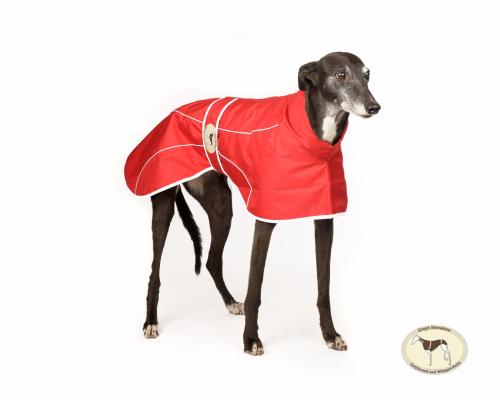 Crimson Red Rain Mac for Greyhounds