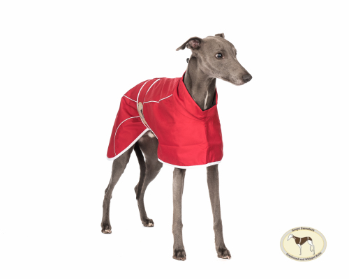 Crimson Red Rain Mac for Whippets