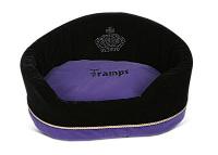 Tramps Monarch ~ Amethyst   (RRP £29.99)