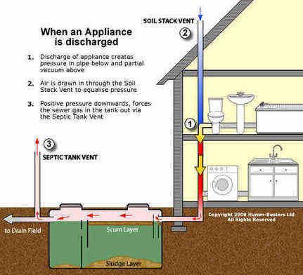 Drain smell sewage stink smelly sink for How do i find drainage plans for my house