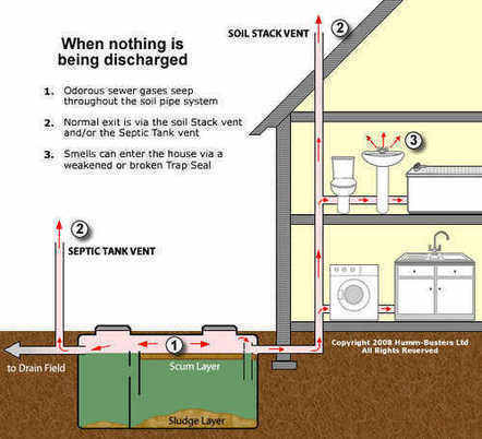 Drain Smell | Sewage stink | Smelly Sink