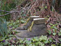 olive woodland boots