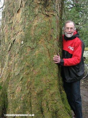 Tree Hug Dot 001a