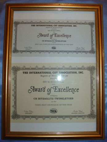 award for bitzaglitz