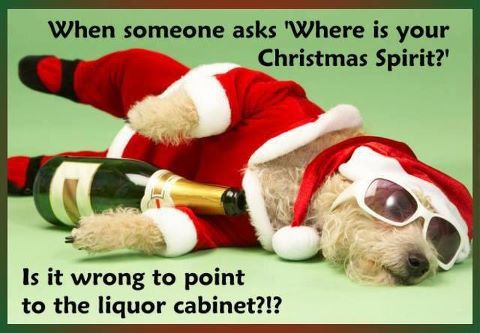 Funny-Christmas-Quotes-For-Facebook-051
