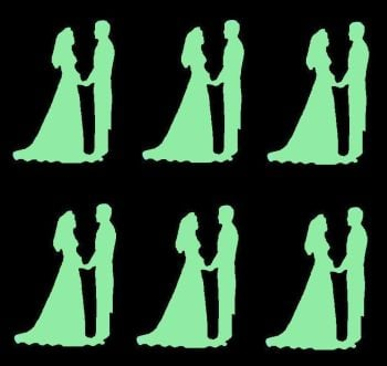 Pale Green Silhouette Bride and Groom Craft Embellishments