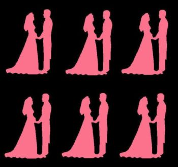 Pink Silhouette Bride and Groom Craft Embellishments