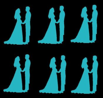 Turquoise  Silhouette Bride and Groom Craft Embellishments