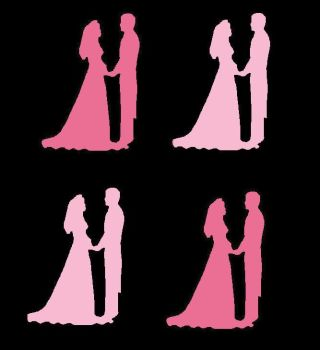 Pinks Silhouette Bride and Groom Craft Embellishments