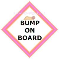 Car Sign - Bump on Board