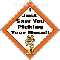 Window car sign, mobile home, caravan sign - I Just saw you picking your nose!!