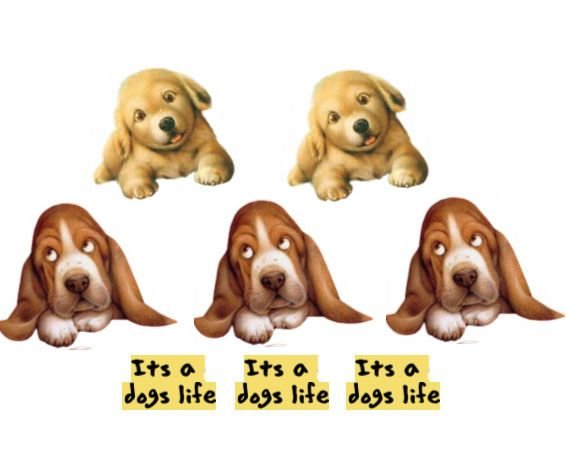 Puppy Dog Card Making Toppers x 5 with 3 Sentiments