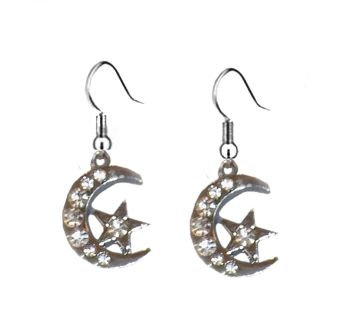 Moon and Star Silver Shade Earrings