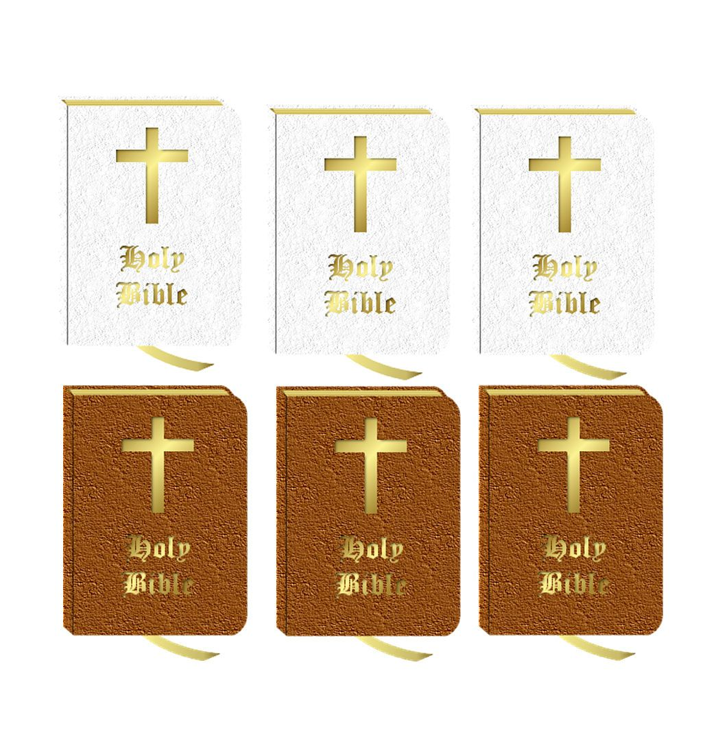 Holy Bible Card Making Toppers