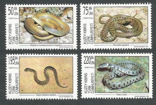 North Cyprus Stamps SG 488-91 1999 Snakes - MINT