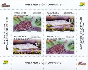 North Cyprus Stamps SG 2018 Protected Animals Reptiles Souvenir Sheet Block