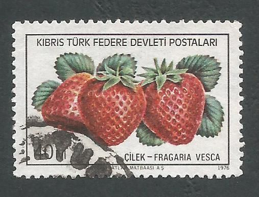 North Cyprus Stamps SG 031 1976 40m - USED (L040)